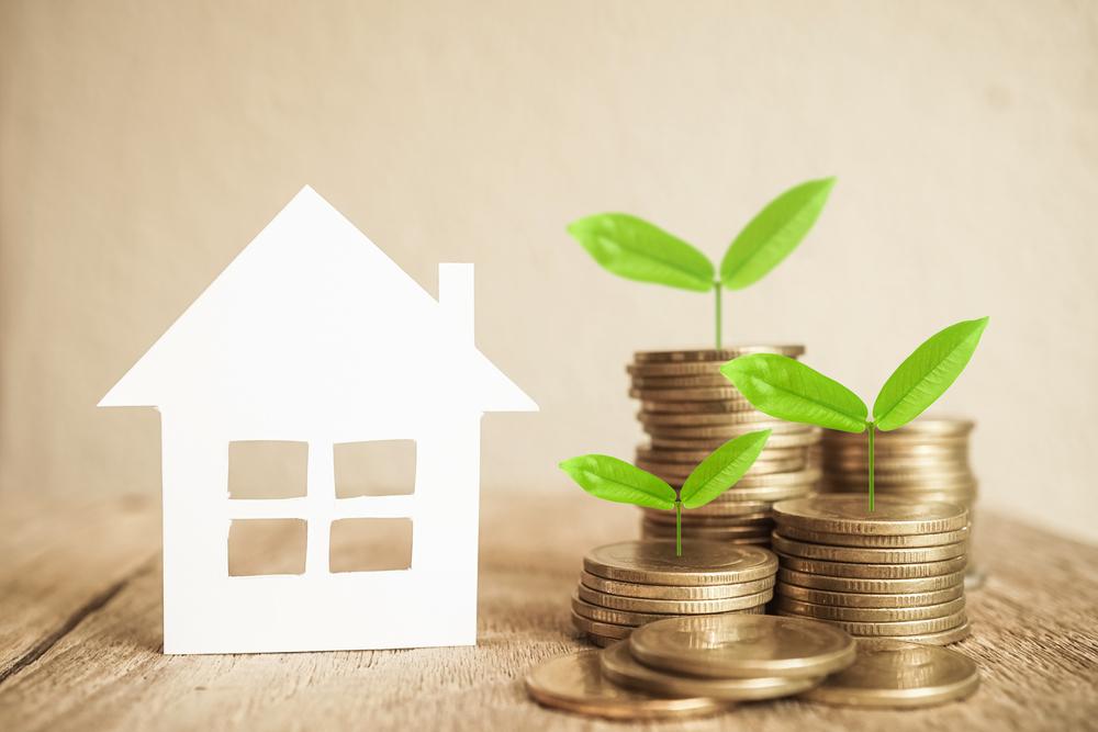 家と芽が出たお金